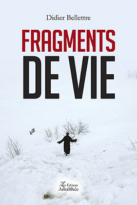 fragments-vie
